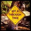 "Berkeley Classics. (""Not a Through [S]tree[t]."") :deciduous_tree:"