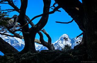 Andes and Tierra del Fuego