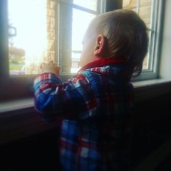 Figuring out the window.
