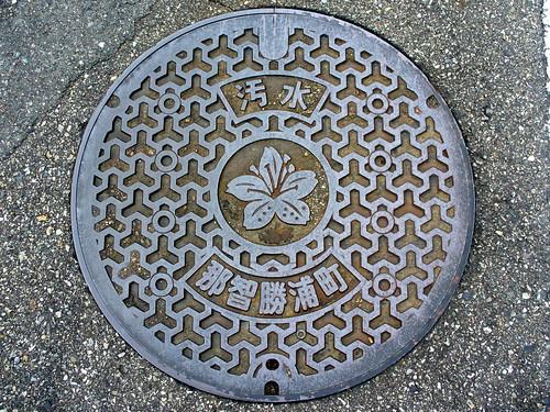 Nachikatsuura Wakayama, manhole cover (和歌山県那智勝浦町のマンホール)