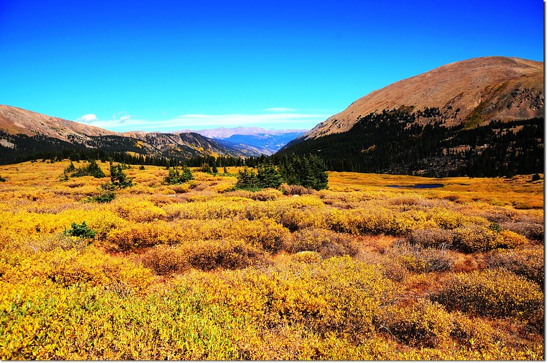 Fall colors at Guanella Pass, Colorado (20)