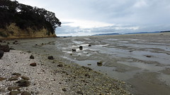 Cockle Bay 29-10-2015 4-03-09 a.m.