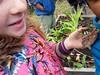 Reiche Garden Harvest 2015