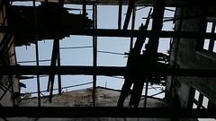 #casaraodavarzea #ruin #ruinart #ruinas #nofilter #semfiltro #teto #telhado