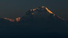 Sunrise on Dhaulagiri I (8,167 m)