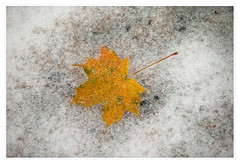 Autumn snow at Mohonk Mountain House
