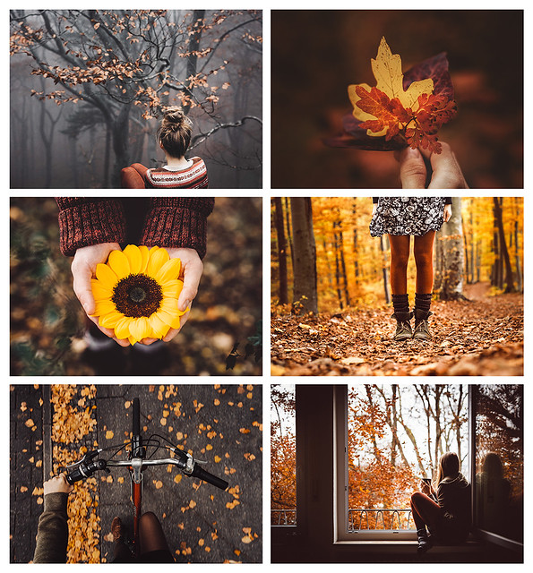 postcard set 'autumn memories'