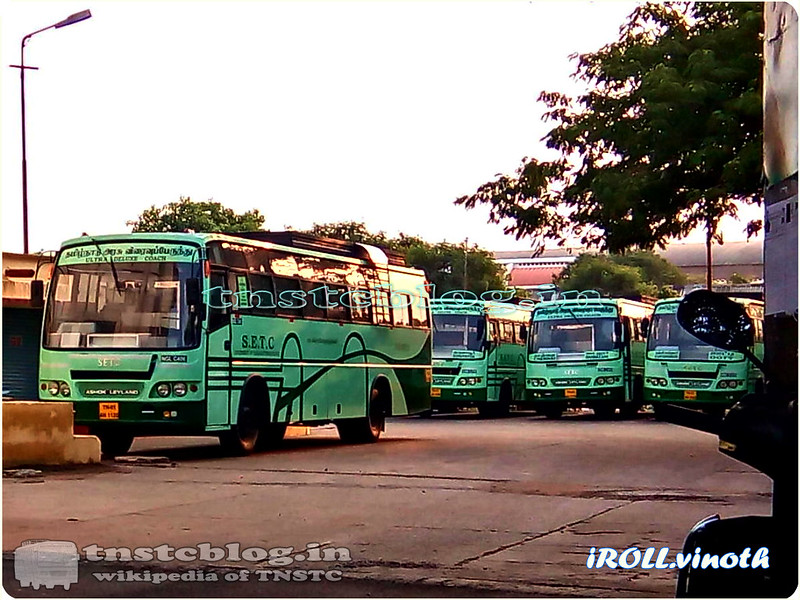 SETC Brand New Buses