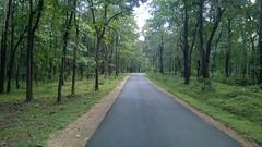 Green Road!