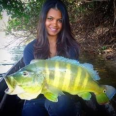 Sim, elas pescam e muito  bem. Para provar, a Michele Rodrigues mostra esse belo tucunare fisgado em Tocantins.  #pescaamadora #pesqueesolte #baitcast #fly #pescaesportiva #sportfishing #tucunareazul #flyfishing #fish #peackock #tocantins #pesca #angler #