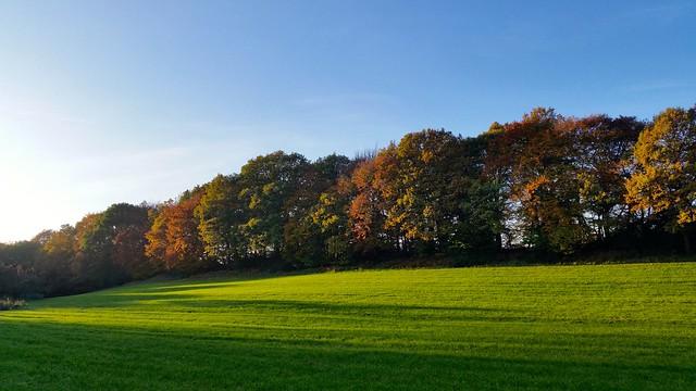 Herbstliches Hintergrundbild