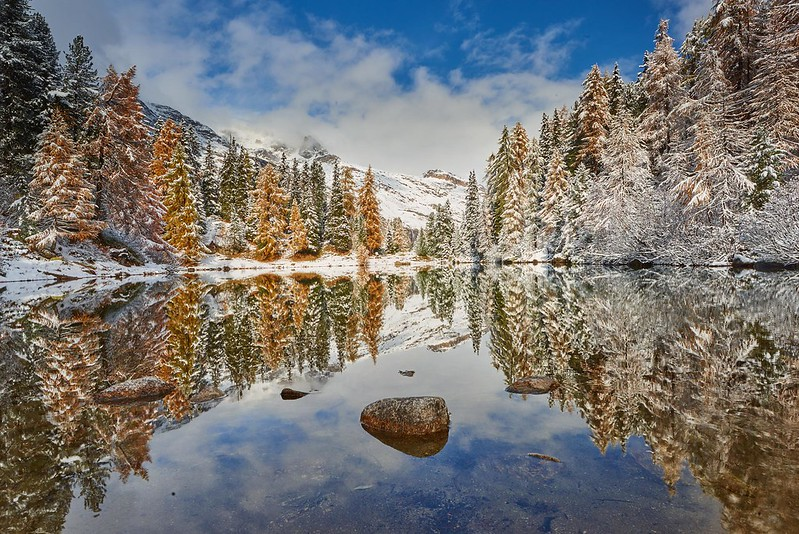 Fresh snow - Lägh da Bitabergh