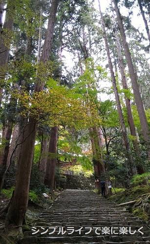 百済寺、参道