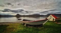 Vigur Island