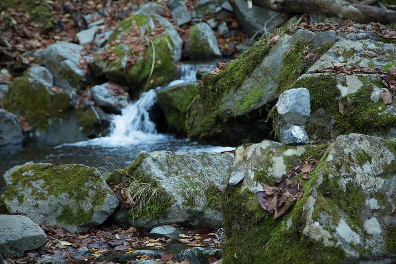 海沢の三滝 奥多摩 #tokyo島旅山旅