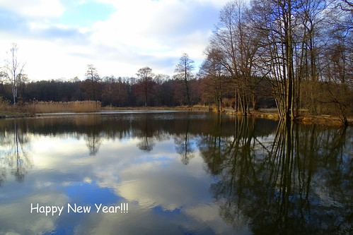 trees winter nature clouds reflections landscape pond view talar happynewyear2016