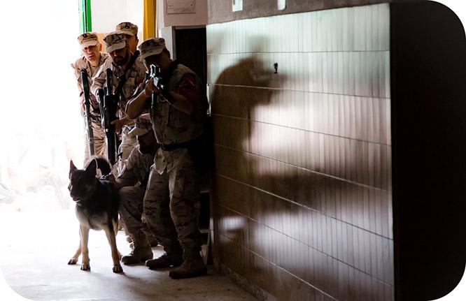 Equipos de la Policía Naval de toda España se adiestran en Cartagena