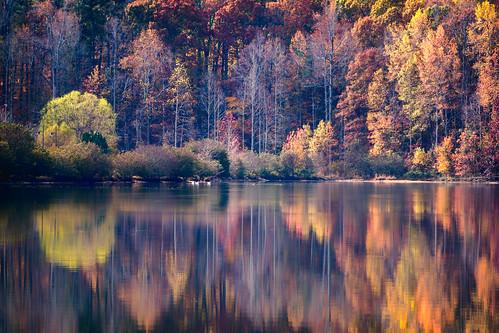 atl atlanta localparks parks lawrenceville georgia unitedstates us fall lake leaves trees reflection orange colors autumn rec hike walk