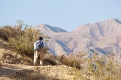 Becky, Big Morongo Canyon Preserve