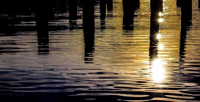 Sunshine on the Pilings