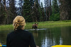 Moose Spotting! by wildvoid