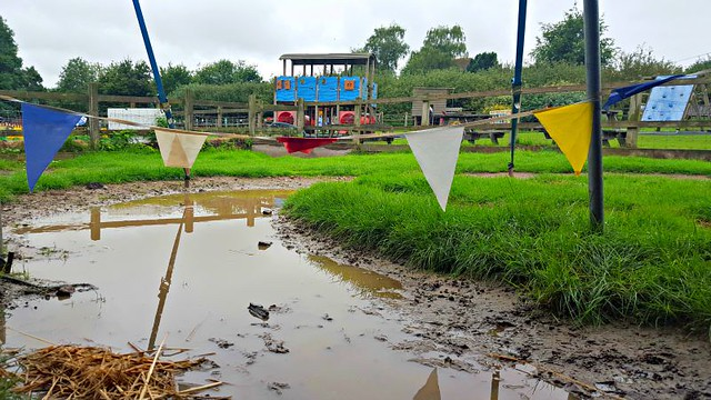 Muddy Water and Bunting