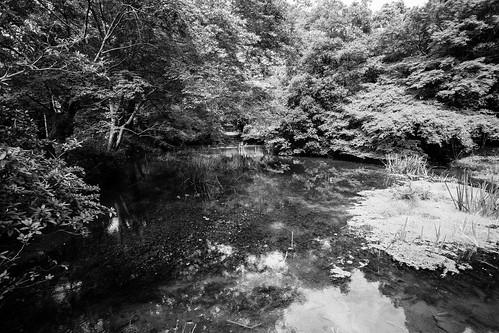 IMG_2672_LR__Kyoto_2015_09_04