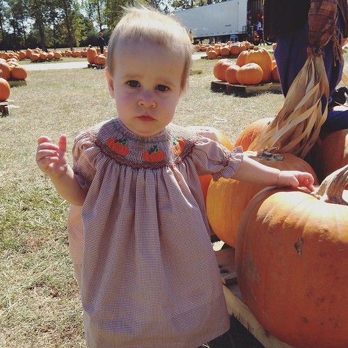 We made it to a pumpkin patch!