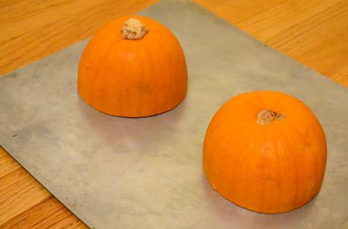 Sugar-Pie-Pumpkin-Cut