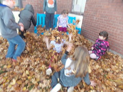 Fall Fun with Leaves
