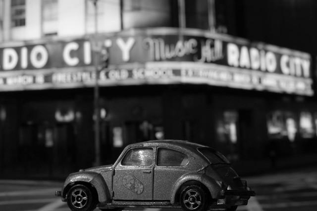 Macro Mondays - Beetles