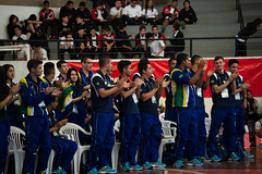 WSC2015_Osoc_Brazil_FG_2030
