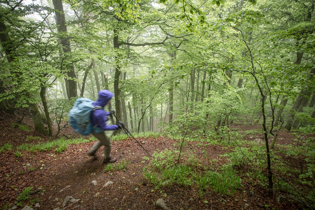 Backpacking for 4 days through Le massif des Vosges. Eastern France. #4monthspregnantinpicture #7kgbackpack