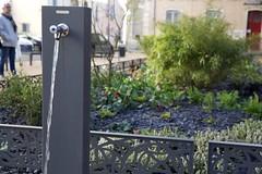 mar, 01/12/2015 - 12:01 - place De Lattre de Tassigny - place De Lattre de Tassigny  création d'un jardin