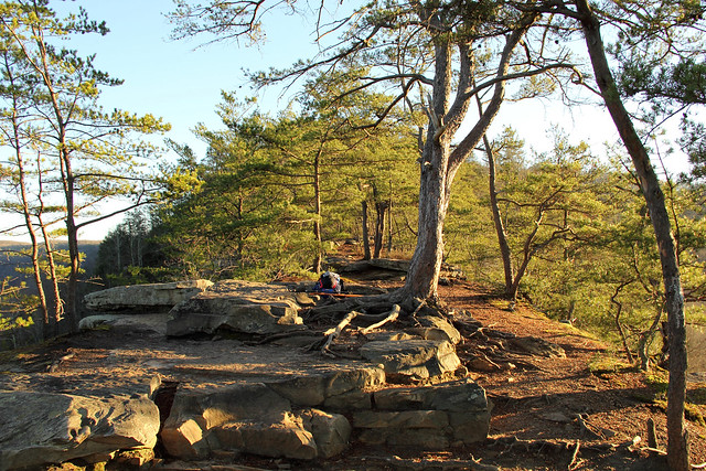 20151205_New_River_Gorge_013