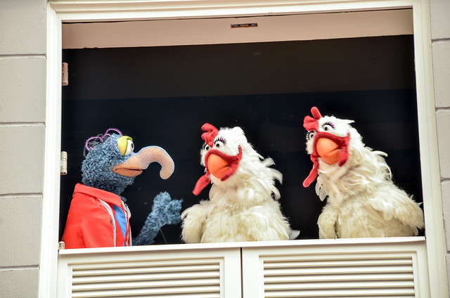 Muppets Gonzo chickens