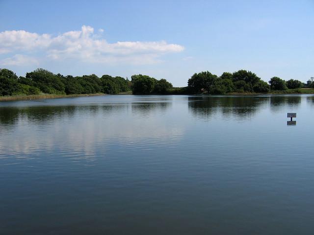 Birdhan Pool