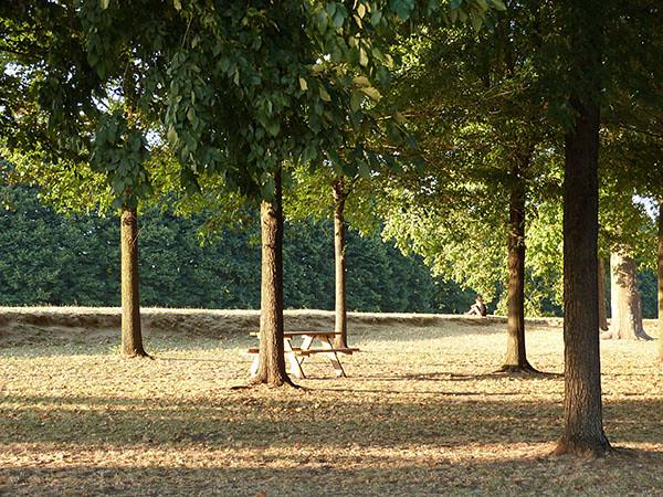sur les remparts de Lucca