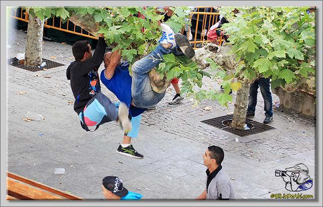 Briviesca en Fiestas 2.015 Segundo encierro Sopas de ajo y encierro infantil (8)
