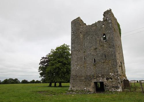 Ballybeg castle slash cow shelter