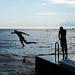 Der Sprung / jump ahead by FrancoM9