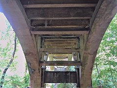 Bridge over Sligo Creek