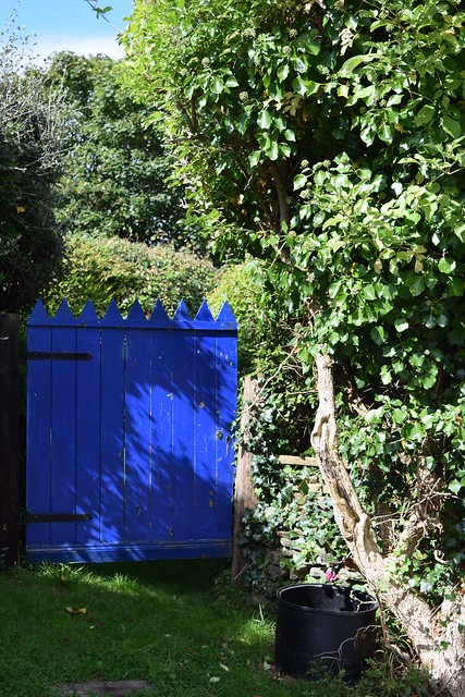 Blue Gate. Ballycotton, Ireland.