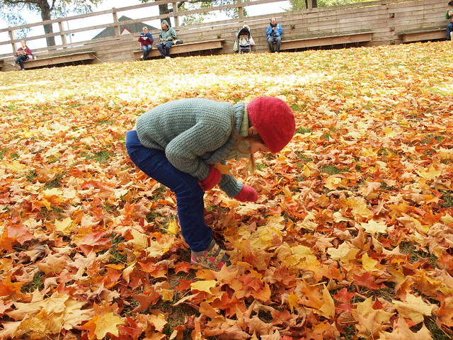 Picking up leaves.