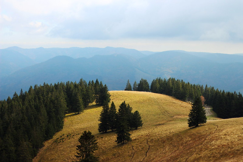 Schwarzwald Herbst 2015 195gimp