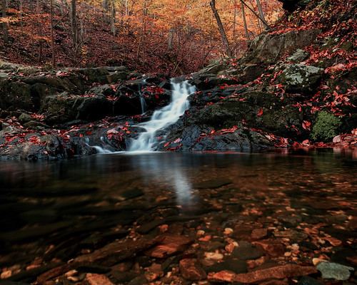 longexposure autumn fall maryland iphone 6s sawmillbranch patpascostatepark