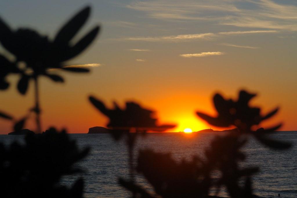 Hoteles de Ibiza cosas que hacer en ibiza en otoño e invierno - 23227462603 aed165361a b - Cosas que hacer en Ibiza en Otoño e Invierno