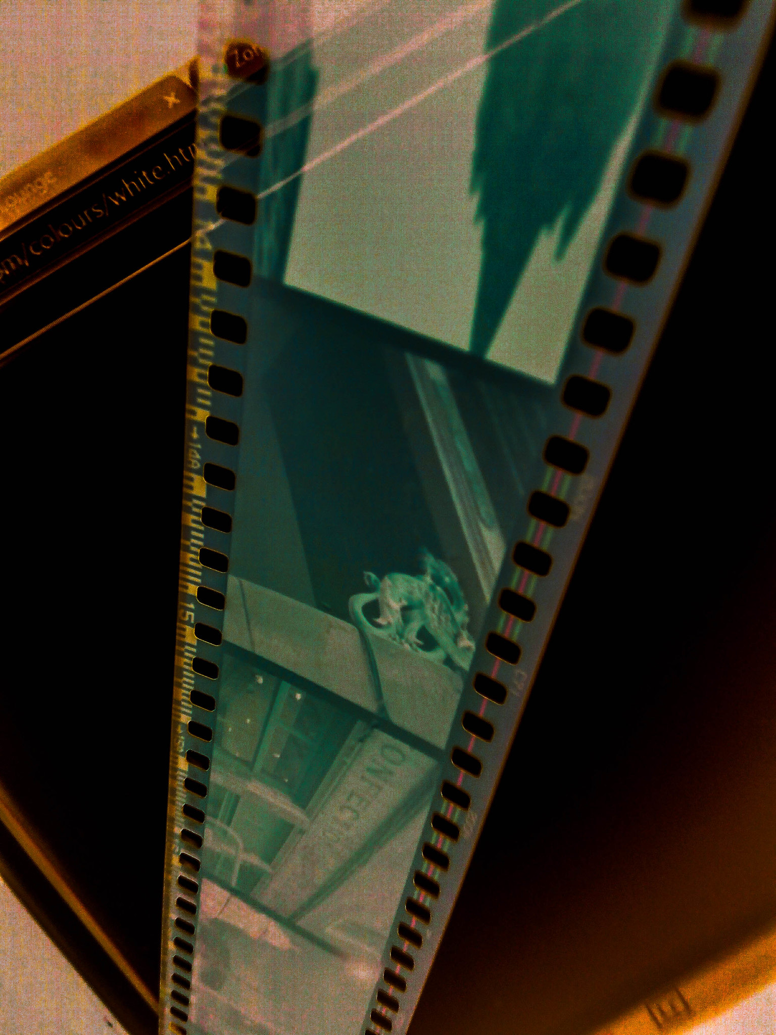 First Attempt At Colour Film Development.