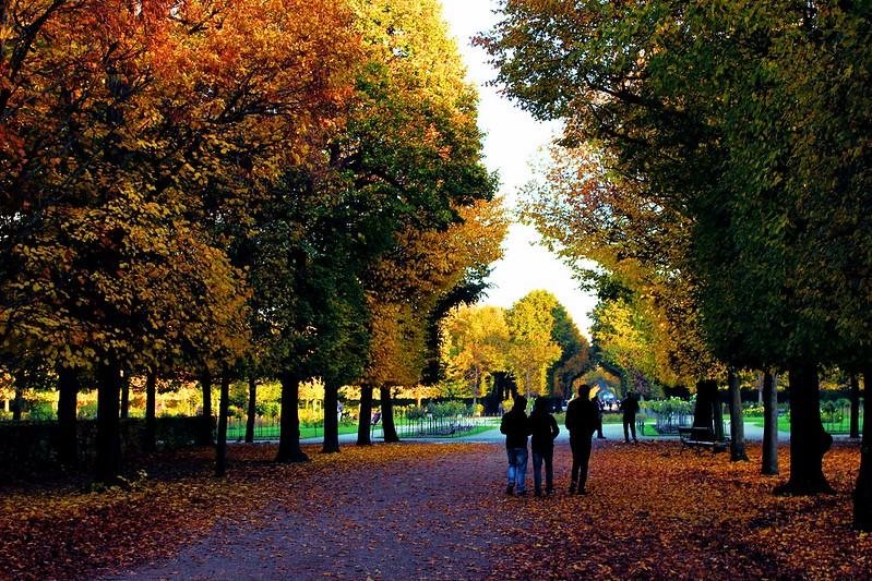 Fall at Schönbrunn Palace, Vienna, Austria