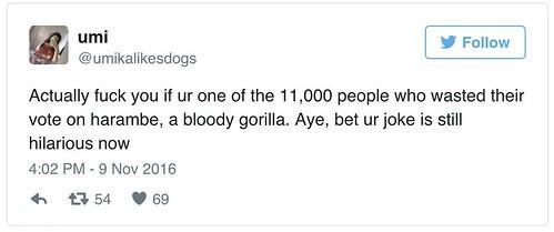 转帖:美国总统大选中有上万人投票给死去的大猩猩 - amen1523 - 雨山诗画